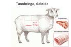 Lammtunnbringa, slaksida