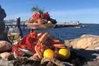 Om skaldjur