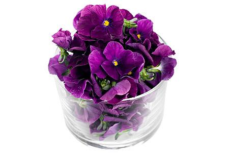 Penséer (violer) - klicka för större bild.