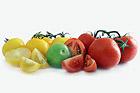Odla grönsaksfrukter