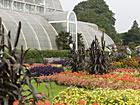 Botaniska trädgårdar