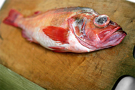 Så tillagas fisk }