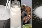 Förvara svamp