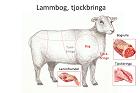 Lammbog, tjockbbringa