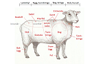 Styckning lamm och får