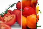 Om grönsaksfrukts-/tomatsåser