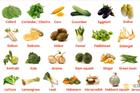 Om vegetabilier