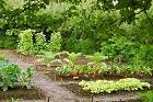 Om trädgårdsodling