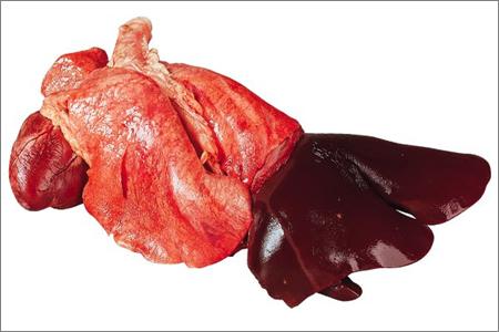 Hjärtslag, lunga