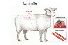 Lammfilé