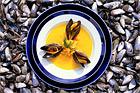 Musselsoppa med rotfrukter (förrätt) - recept