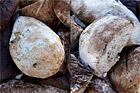Mörkt valnötsbröd av fint rågmjöl och vete - recept