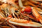 Hemkokta havskräftor - recept