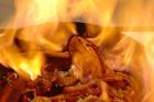 Homard à l´armoricaine (Homard l´américaine - amerikansk hummer) - recept