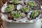 Ostron, Oysters Rockefeller original - recept