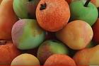 Marsipanfrukt - recept